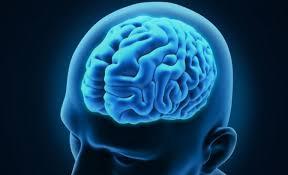 کار متخصص اعصاب و روان (روانپزشک) چیست؟ کی باید به روانپزشک مراجعه کنیم؟