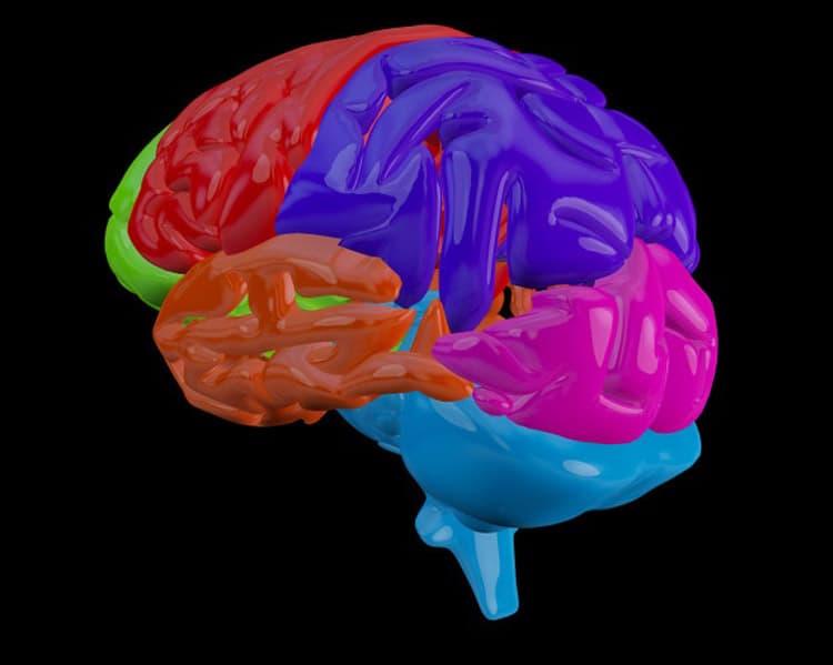 متخصص مغز و اعصاب 3