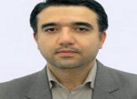 محمد رضوی